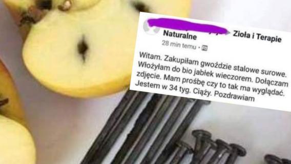 Gwoździe w jabłkach