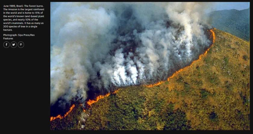 Pożary lasów w Amazonii coraz groźniejsze