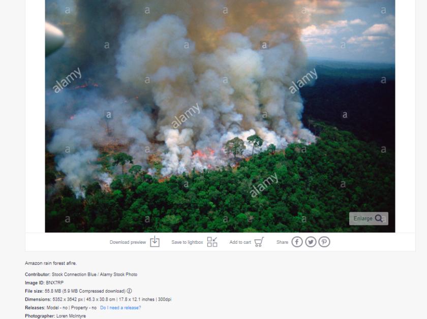 Pożary lasów w Amazonii wciąż się rozszerzają