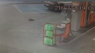 Pies potrącony na stacji benzynowej