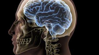 W ilu procentach człowiek wykorzystuje swój mózg? Naukowcy znają odpowiedź