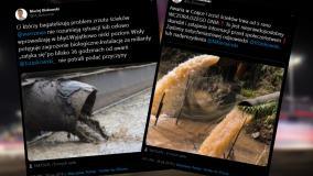 Afera ściekowa: warszawski radny z PiS skomentował awarię. Pokazał przy tym stockowe zdjęcie