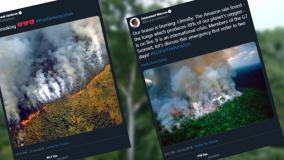 Pożary lasów w Amazonii. Gwiazdy i politycy udostępniają zdjęcia sprzed lat