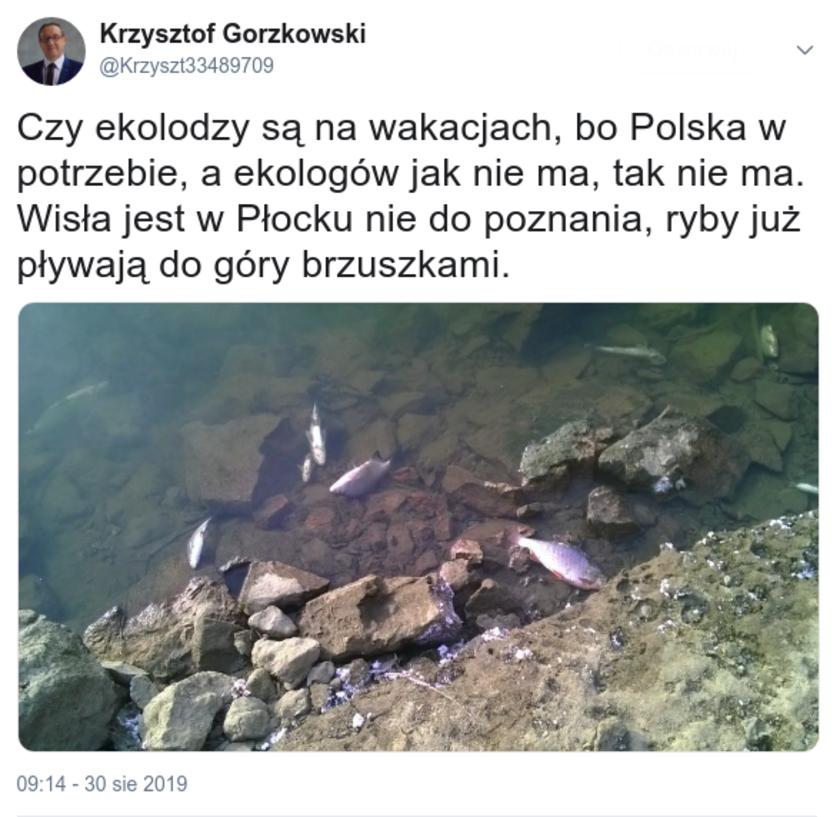 Dużo ryb kontaktowych numer telefonu