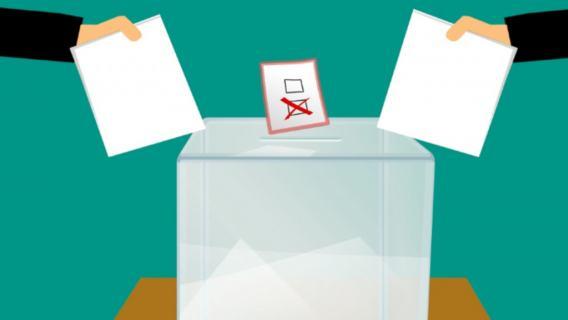 Wybory parlamentarne głosowanie