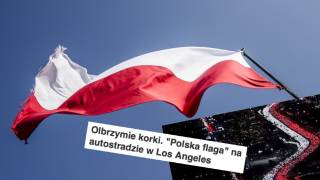 Polska flaga USA