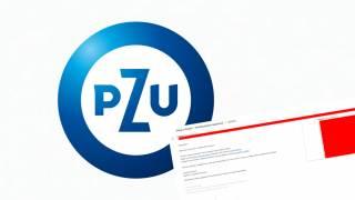 PZU Biedronka