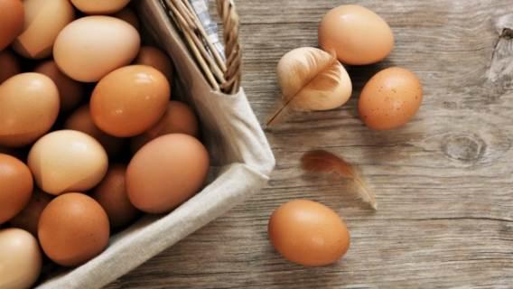 Jajka zdrowie