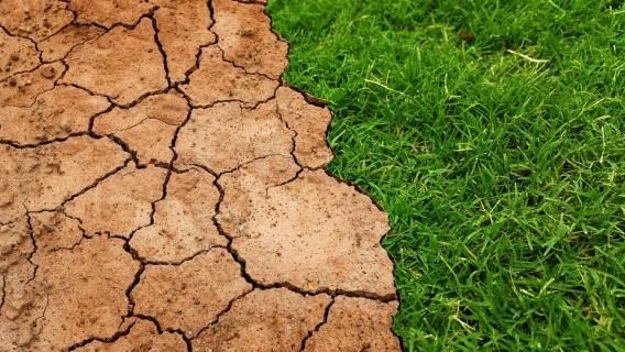 gazy cieplarniane poziom