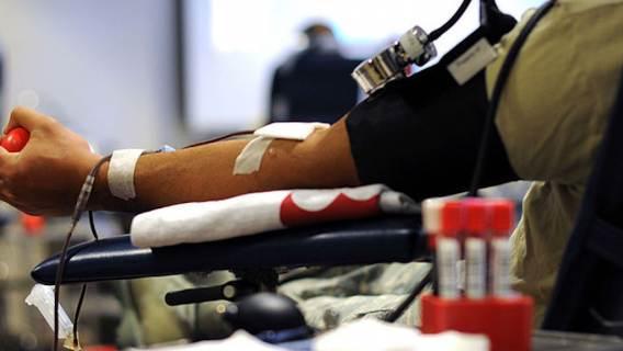 Oddanie krwi choroby