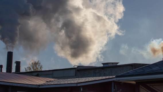 Młodzi Polacy lepiej rozumieją, jak niebezpieczne jest zanieczyszczenie powietrza? Sondaż na to nie wskazuje