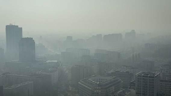 ile kosztuje smog dane