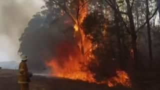 Australia pożary 2020