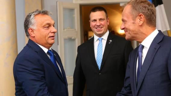 W węgierskich mediach powraca temat 'dziadka z Wermachtu' Donalda Tuska. Pokazano też fałszywe zdjęcia