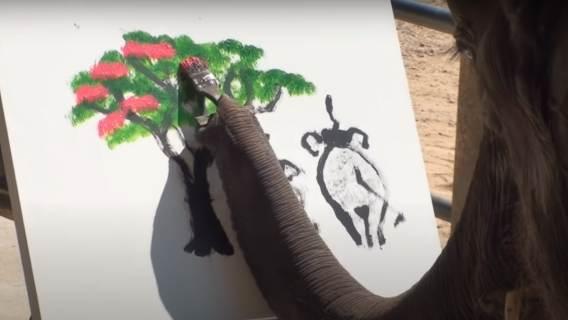 Malujący słoń.